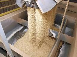 Farelo de Soja– Granel Ensacado